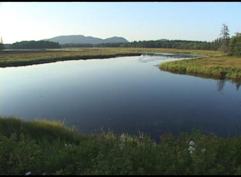 Long-shot of a lovely river as it flows through Acadia National Park, Maine Footage
