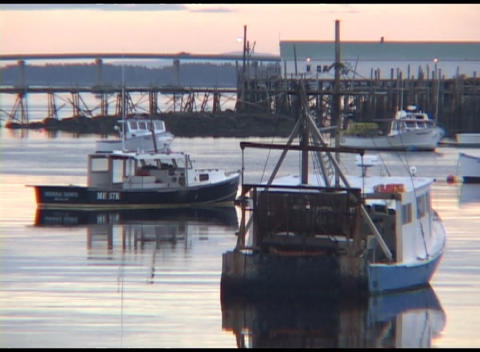 Medium shot of fishing boats moored in a harbor in Maine Footage