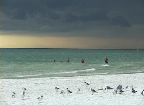 Vacationers swim in the ocean under a cloudy sky Footage
