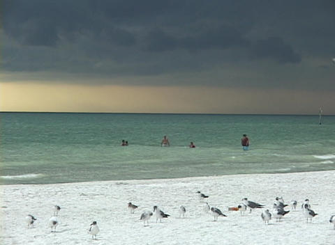 Vacationers swim in the ocean under a cloudy sky Stock Video Footage