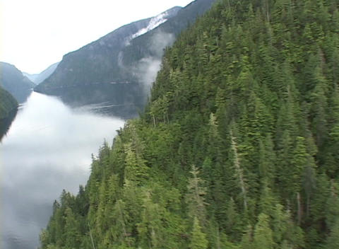 An aerial over a gorgeous Alaskan fjord Stock Video Footage