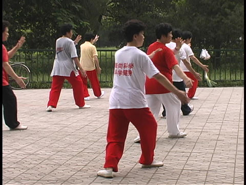 Chinese men and women practice Tai Chi in a park Stock Video Footage