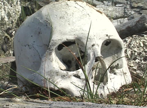 The skull of a native Alaskan sits in a sacred site in the Aleutian Islands Footage