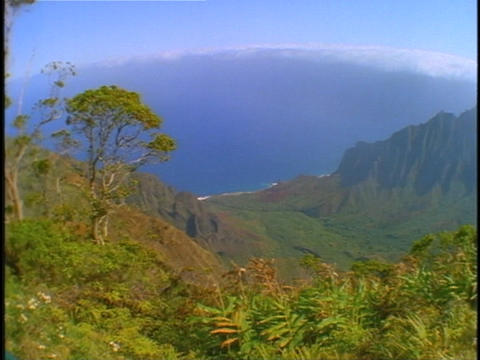 Lush, tropical cliffs rise above an island shoreline Stock Video Footage