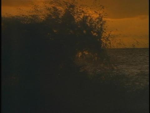 Waves splash against the shore Live Action