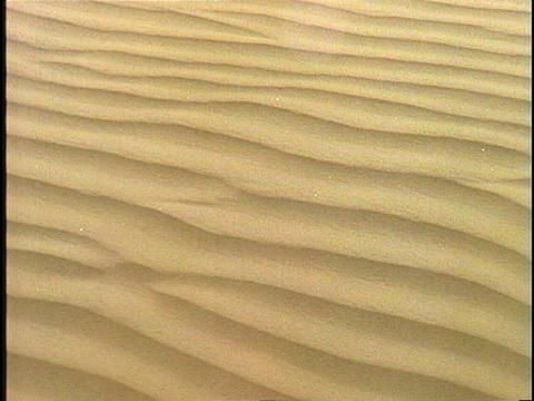 Wind blows across rippled sand Stock Video Footage