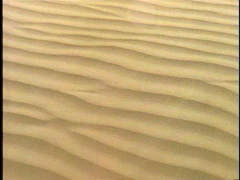 Wind blows across rippled sand Footage