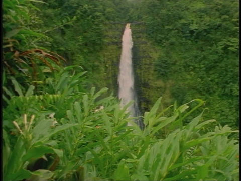 A waterfall spills into a tropical jungle Stock Video Footage