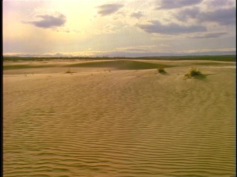 Sand blows across vast, rippled dunes Stock Video Footage