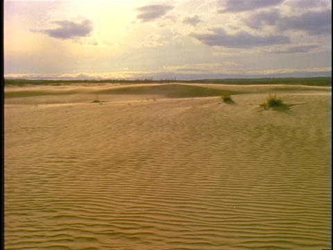 Sand blows across vast, rippled dunes Stock Video Footage
