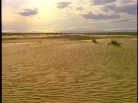 Sand blows across vast, rippled dunes Footage