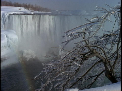 Ice covered branches frame Niagara Falls in the distance Footage