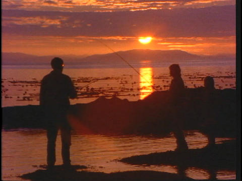 A family fishes from a beach Stock Video Footage