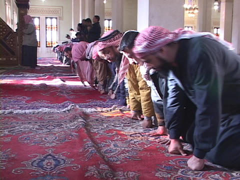 A group of Muslim men pray in a mosque in Baghdad Footage