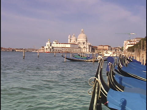 Moored gondolas bob up and down in the choppy waters of the Grand Canal in Venice, Italy Footage