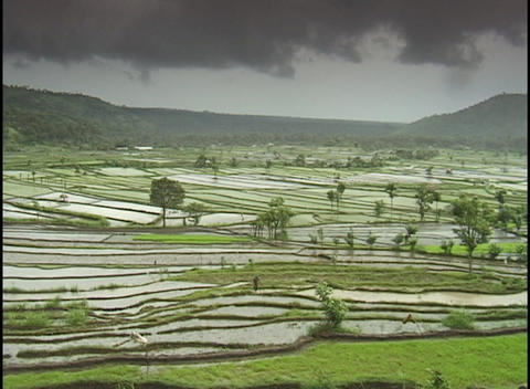 Dark clouds hang over a terraced rice paddy Stock Video Footage
