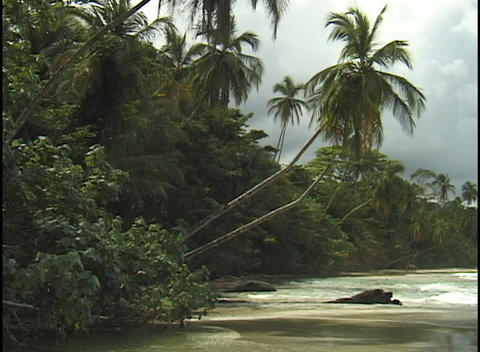 Waves wash gently onto a secluded tropical beach Stock Video Footage
