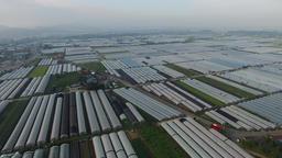 비닐하우스 농업 Footage