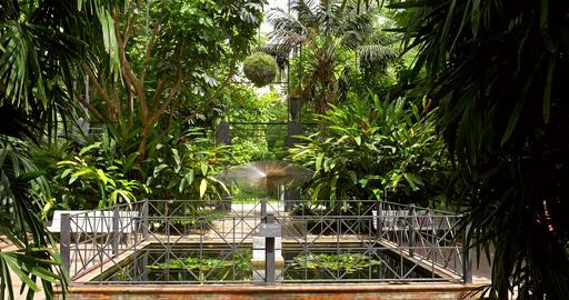 Botanical Garden of University of Valencia Footage