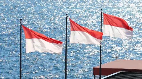 Monaco国旗 Footage