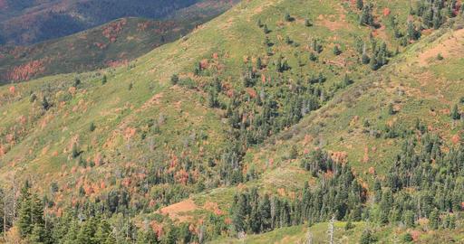 Autumn tree colors cloud shadow mountain landscape fast DCI 4K Filmmaterial