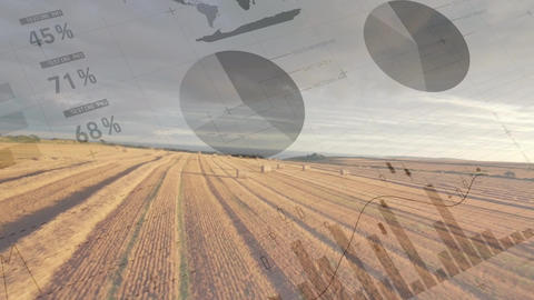 Agricultural field and statistics Animation