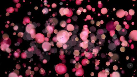 Pink bokeh lights Animation