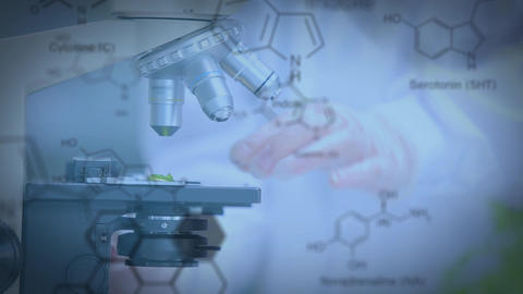 Compound microscope and chemical structures Animation
