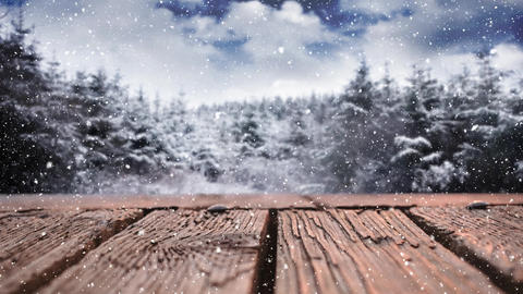 Wooden deck and snowy trees Animation
