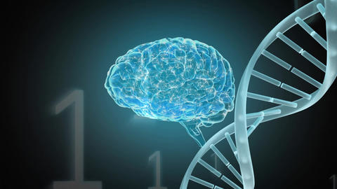 Digital animation of a brain and a DNA helix Animation