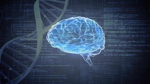 Digital animation of a brain Animation