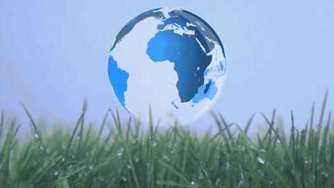 Globe rotating above grass Animation