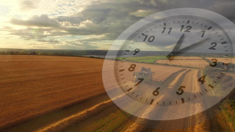 Agricultural field with clock Animation