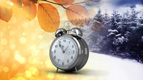 Winter and autumn Animation