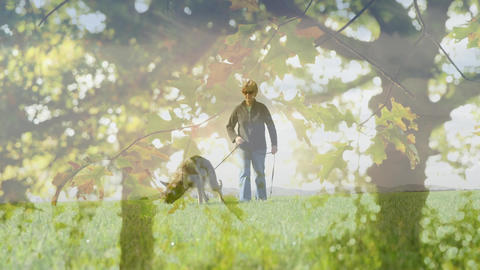 Woman walking with a guide dog Animation