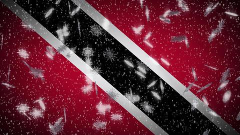 Snowfall On Background Of Flags Of Random Countries 3 Loop 0