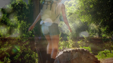 Woman hiking in the forest Animation
