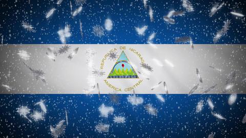 Snowfall On Background Of Flags Of Random Countries 3 Loop 1