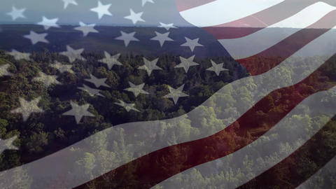 American flag and a view of a forest Animation