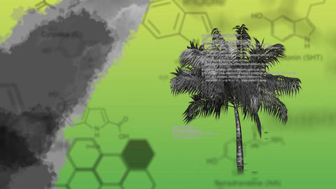 watercolor spreading with palm tree and chemical structures Animation