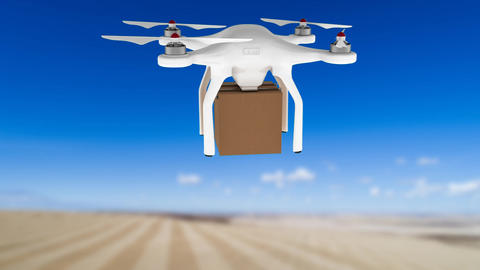 Drone carrying a delivery package Animation