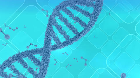 DNA helix rotating on a blue background Animation