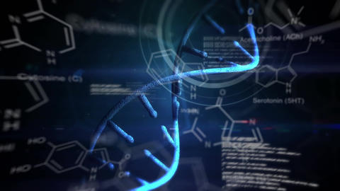 Genetic study and modification Animation