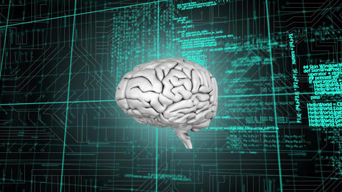 Brain and a digital circuit with program codes Animation