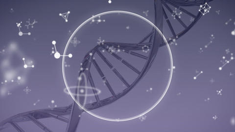 DNA and molecules moving on grey background Animation