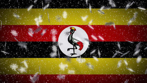 Uganda flag falling snow loopable, New Year and Christmas background, loop Animation