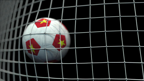 Ball with flags of Vietnam hits goal. 3D animation Live Action