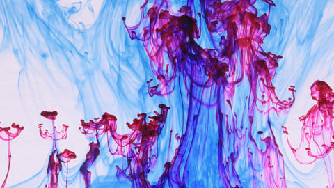 Droplet paint under water and move of colored ink, bright colors. Abstract Live Action
