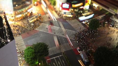 Shibuya Crossing In Tokyo Japan ビデオ