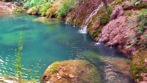 Colorful amazing water in the lake or pond and beauty nature around Live Action
